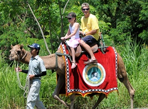 Family Bali Tour Package – 2 Days