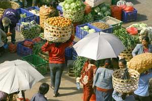 badung fruit market bali