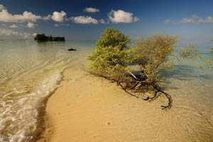 dodola island maluku indonesia