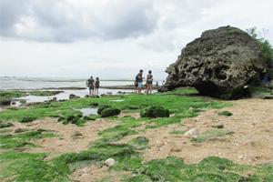 landscape padang padang beach bali